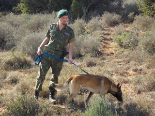 Anti-Poaching-K9-Blade-Cabous-Pretorius-Dog-Unit-320x240